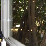 Big window next to our table