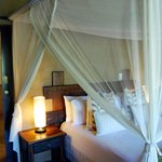 Vuyani Safari Lodge의 사진