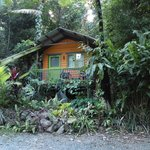 Photo of Rainforest Hideaway