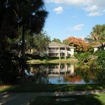 Фотография Sheraton Vistana Resort - Lake Buena Vista