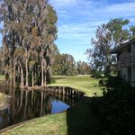 Photo de Saddlebrook Resort Tampa