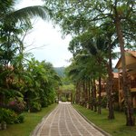Photo of Grand Cabana Hotel & Resort