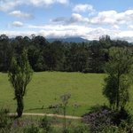 Bellingen YHA Backpackers의 사진