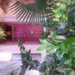 Photo de Creole Gardens Guesthouse Bed & Breakfast