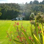 Kauri Coast Top 10 Holiday Park Foto