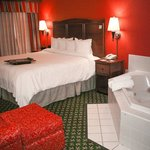 Deluxe Whirlpool Room at Hampton Inn Elkhart