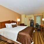 BEST WESTERN PLUS Richmond Airport Hotelの写真