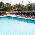 Poolside Wedding Ceremonies Available