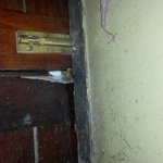 Mouse hole in main Chalet door