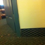 We had an unwanted guest staying with us in October. Rooms really need an update. Old carpet ugl