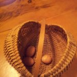 The eggs we collected