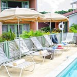 Halcyon Palm Pool Loungers