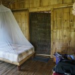 Under the mosquito net
