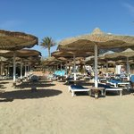 Camel Dive Club & Hotel의 사진