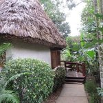 Beautiful thatched roof accomodations
