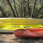 A great range of kayaks to experience the many awesome bays