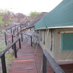 Eagle Tented Lodge & Spa의 사진