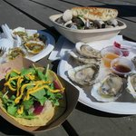 Creole baked oysters, clam steamers, oysters on half shell, oyster taco
