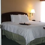 Hampton Inn and Suites Florence-Civic Center resmi