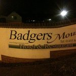 badgers mount in night