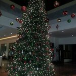 Christmas tree at the lobby