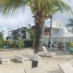 Φωτογραφία: Mercure St Martin and Marina