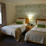 Thames Court disability accessible twin-bedded room