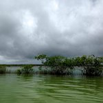 The Bacalar lagoon