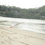 Photo de Currumbin Sands on the Beach