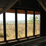 Foto de Ngoma Safari Lodge