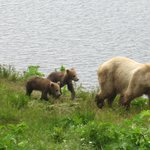 Alaska's Kodiak Island Resortの写真