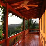 A suite balcony view with the jungle canopy below.