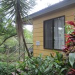 Photo de Daintree Valley Haven
