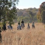Mabula Game Lodge - Horseback Safaris