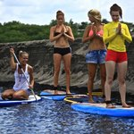 Eco Mangrove tours SUP or Kayak