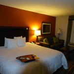 Φωτογραφία: Hampton Inn Winston-Salem - I-40 / Hanes Mall