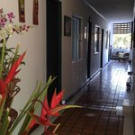 Photo de Top Garden Boutique Guesthouse