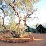 On-site tents (2-person) at King's Creek Station, NT