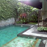 The villa pool