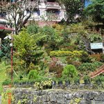 Club Mahindra Gangtok, Royal Demazong照片