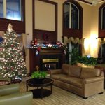 Φωτογραφία: Holiday Inn Express Asheville - Biltmore Square Mall