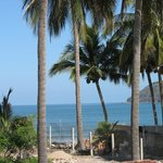 View from Palapa across road to beach