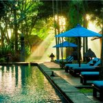 Photo of Hotel Novotel Bogor Golf Resort and Convention Center