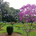 Nearby Cubbon Park