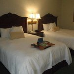 Foto de Hampton Inn Summerville