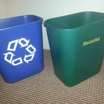 So my options are blue recycle or green recycle. Good job geniuses.