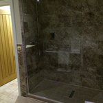Silver Birch walk-in shower
