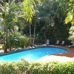 Shelly Beach Resort's rainforest setting