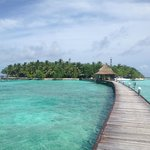 Photo de Thulhagiri Island Resort