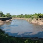 Mara River and Hippos